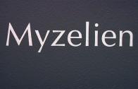 Vernisage: Myzelien in der Galerie Theodor v. Hörmann