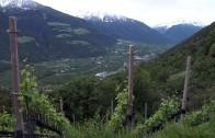 Ausflug nach Südtirol