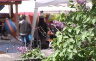 Kermes Imst – Fest der Köstlichkeiten