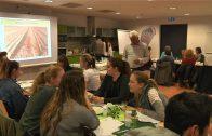 """Olivenöl Workshop """"Lebensmittel oder Sterbemittel"""""""