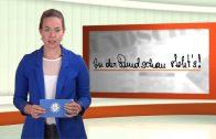 Rundschau News