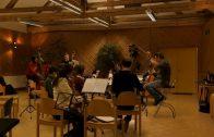 Telfer Musikschule wird Landesmusikschule