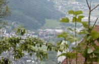 Bauernhof-Besuch in Bairbach