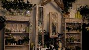 Blumen Glantschnig – Weihnachtsausstellung