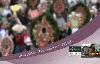Patronanz Walder Fasnacht 2019