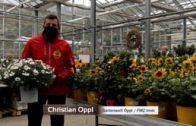 Gartenwelt Oppl KW 17 2020