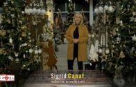 Sigrid Canal führt uns durch den Weihnachtsmarkt beim Canal